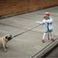 Girl pulling at her dog with a leash
